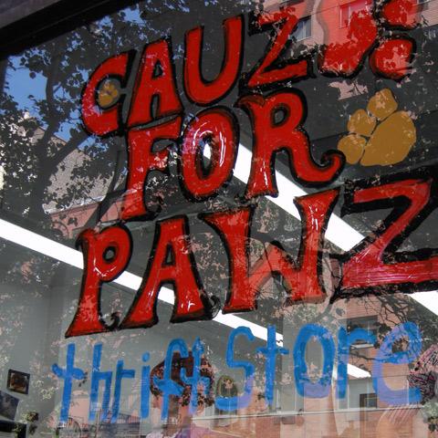 Cauz For Paws