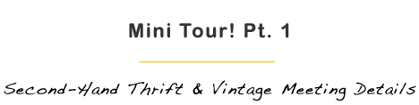 Oh So Thrifty Part 2 Thrift and Vintage Meeting Details