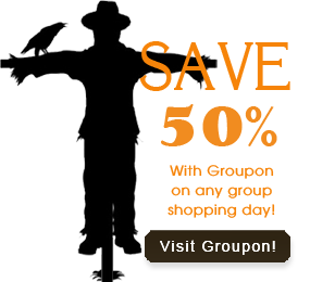 Save on any tour when purchasing at Groupon.